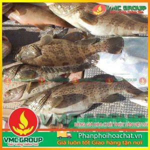 bang-gia-hoa-chat-thuy-san-viet-my-pphcvm